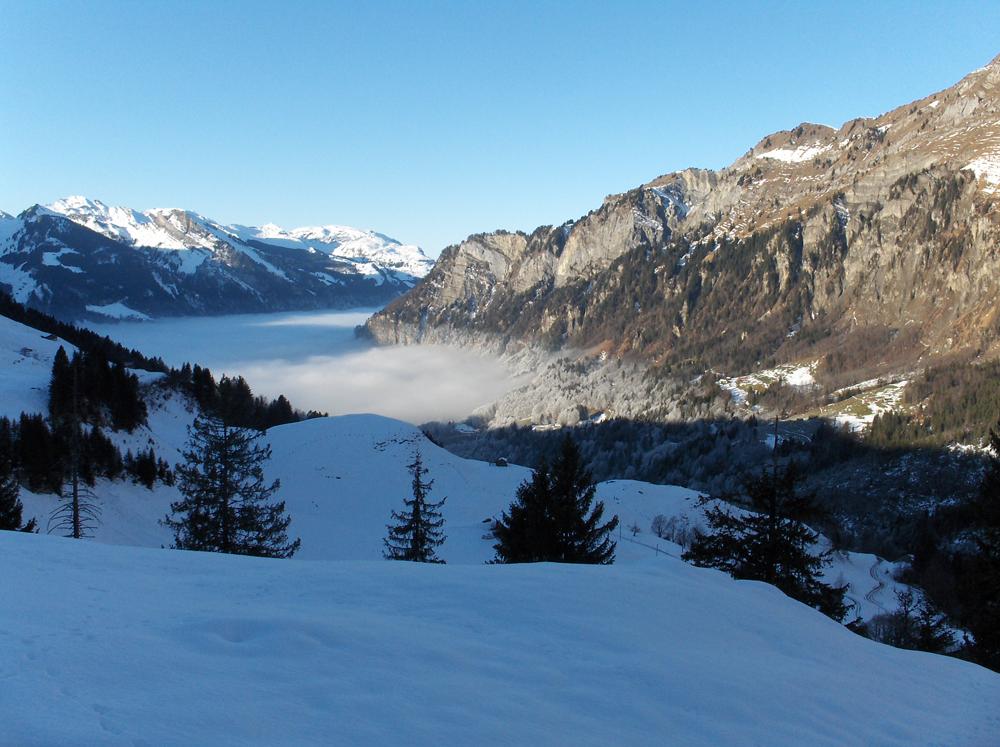 Nebelmeer und wenig Schnee Jan. 2007