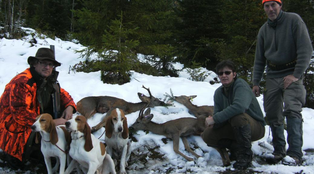 Traumhafte Jagd mit Jagdhunden